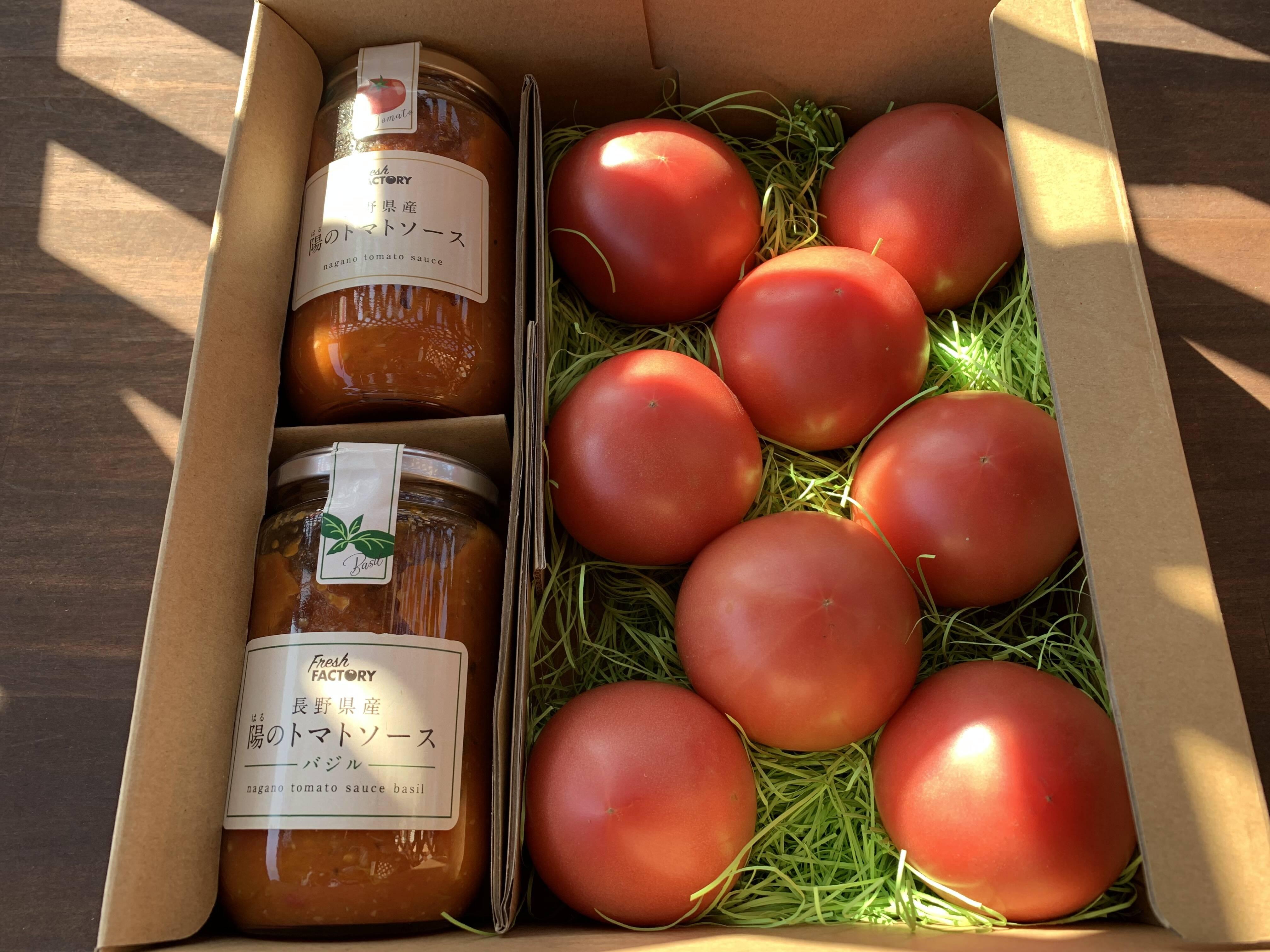 ソース ミニ トマト トマト