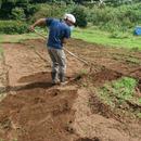 Chigasaki Organic Farm