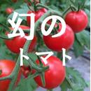 miuトマトの飯田農園