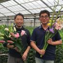 flower grower's