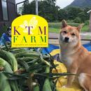 KTM ファーム