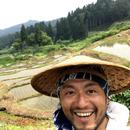 Natural Rice Field 郷彩