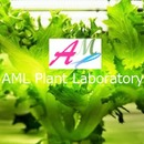 AML植物研究所