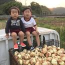 KAMA FARM(釜ファーム)