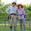 K.FieldWorks 甲斐市小林農園
