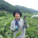 ふるば村自然農園
