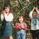 島田フルーツ農園
