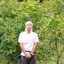 柑橘系猫農園