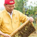 西岡養蜂園