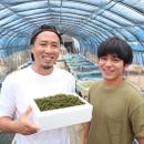 海ぶどう屋さん 富永養殖