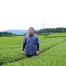 嬉野茶 池田農園