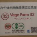 VegeFarm32