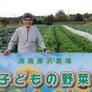 子どもの野菜湘南藤沢農場