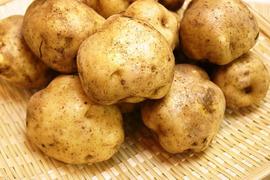 馬鈴薯 男爵 1㎏/セット