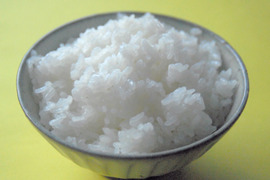 新米コシヒカリ白米5kg 新米予約