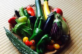 【お中元・お歳暮・ご贈答に・自家用に】アルプスの無農薬*お野菜BOX