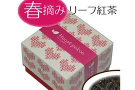 知覧紅茶《Heart pekoe》春摘み[40g]リーフティー