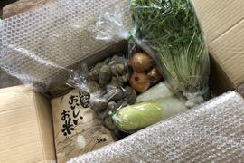 丹波篠山産コシヒカリ3kgとお野菜5種の詰合せセット