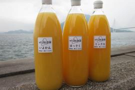 瀬戸内よりお届け!かんきつジュース3種類飲み比べセット【無添加・果汁100%】