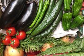 瀬戸内よりお届け!旬の野菜詰め合わせ便+たまご6個(4~5名様用)