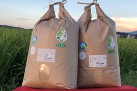 【新米】2019年産 ミルキークイーン 10キロ玄米 有機肥料無農薬 精米希望の方は無料にて