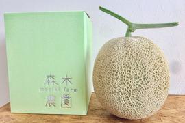 数量限定【メロン1玉セット】一果穫りの贅沢果実アールスメロン