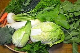 野菜のボックス(大)10種類前後