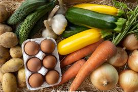 丹波篠山の旬のお野菜と卵の8点詰め合わせセットS
