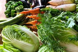 丹波篠山美味野菜3品+農場主おまかせの詰め合わせセット