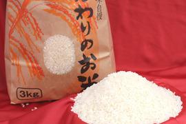 特別栽培米コシヒカリ白米5㎏