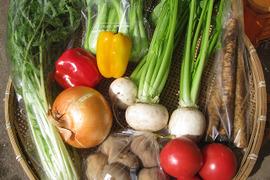 季節のおまかせ野菜 BOX+とまとジュース180ml瓶×2本セット