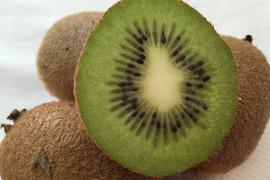 【有機JAS】無農薬キウイフルーツ「ヘイワード」(2kg)