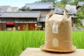 【金鵄米/白米】冷めても美味しいヒノヒカリ きんしまい(5kg)