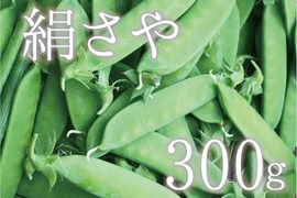 【5月限定!旬の味♪】絹さや 300g