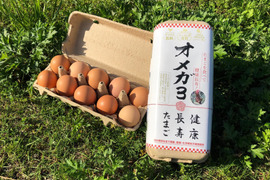 【環境省公認】走る鶏の卵!お多福たまご