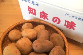 【北海道知床産】 越冬完熟じゃがいも2品種(4.5kg)