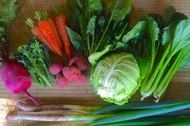 【角田あおぞら農場】旬*お試し野菜セット(8〜10品目)