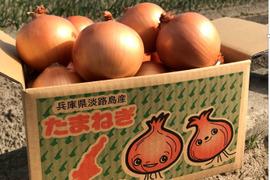 【淡路島産】特別栽培  玉ねぎ 5kg