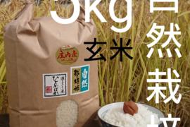 【 玄米・5kg 】米の旨味たっぷり 自然栽培米 ひとめぼれ