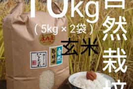 【 玄米 ・ 10kg 】米の旨味たっぷり 自然栽培米 ひとめぼれ