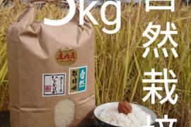 【5ぶつき精米・5kg】米の旨味たっぷり 自然栽培米 ひとめぼれ
