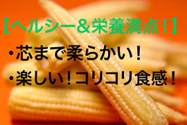 【おすすめ】☆ヘルシー&栄養満点!☆朝採れ☆オーガニック☆ヤングコーン30本👨🌾🌽