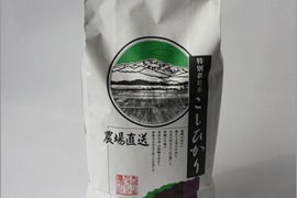 【令和元年産米】(白米)特別栽培コシヒカリ(石川県産)10kg