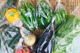 鴨さんの旬を届ける野菜セット8種類程度