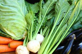 【茨城県産】つくばの生でも美味しい野菜5品目セット
