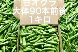 【鹿児島産】甘オクラ1キロ^_^