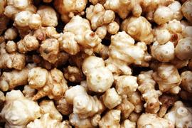 無農薬栽培の菊芋(トピナンブール)