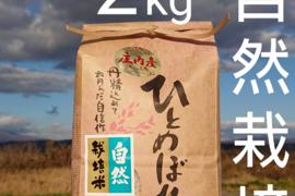 【 標準精米 ・2kg 】米の旨味たっぷり 自然栽培米 ひとめぼれ