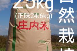 【 玄米・25kg 】米の旨味たっぷり 自然栽培米 ひとめぼれ