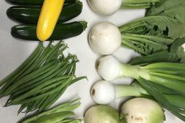 野菜セット 新規参加 セール